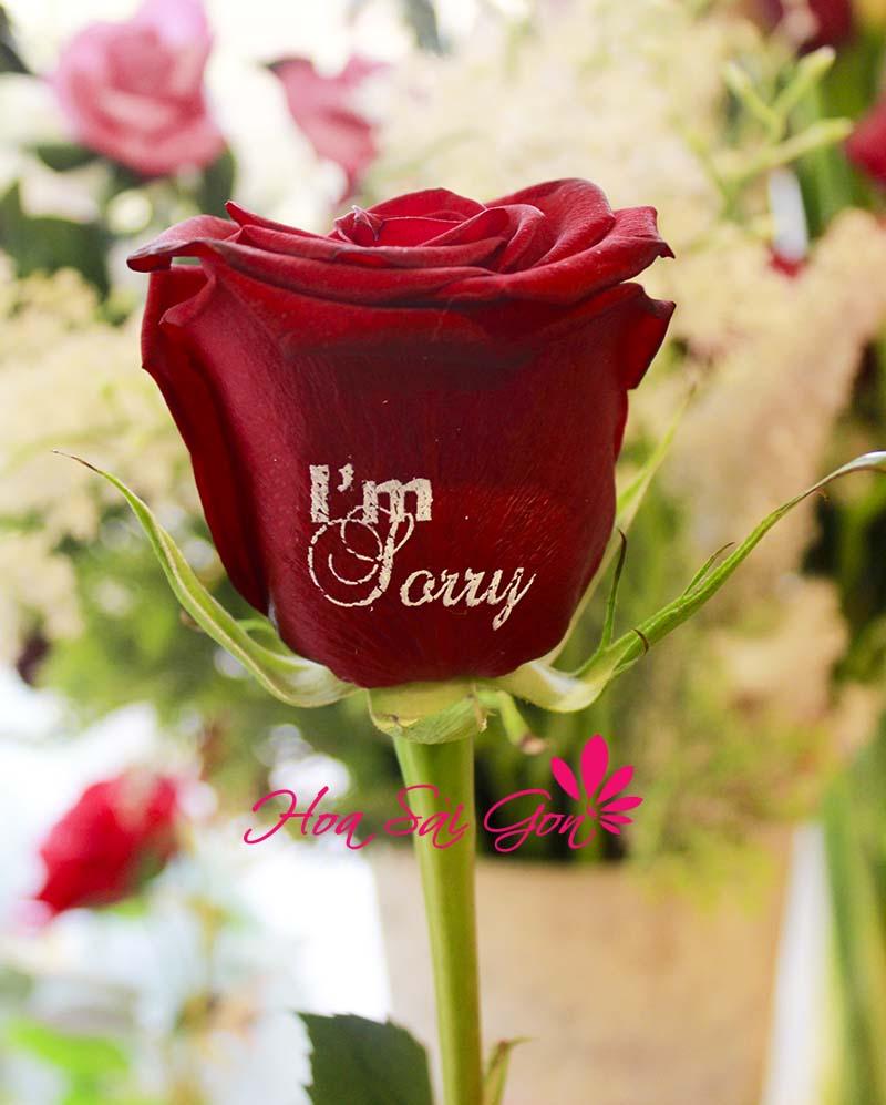 Hình ảnh in trên cánh hoa là vô cùng sắc nét và tươi thắm rất đẹp