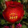 Happy New Year 2017 - S44