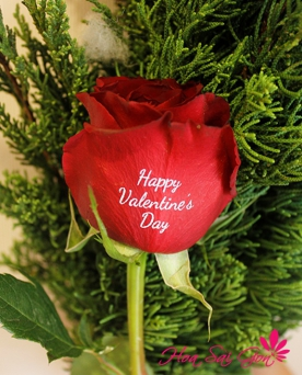 Happy Valentine's Day - S50