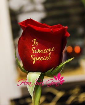 Speking Roses To Someone Special - S26