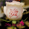 Speaking Roses - Love You - S28